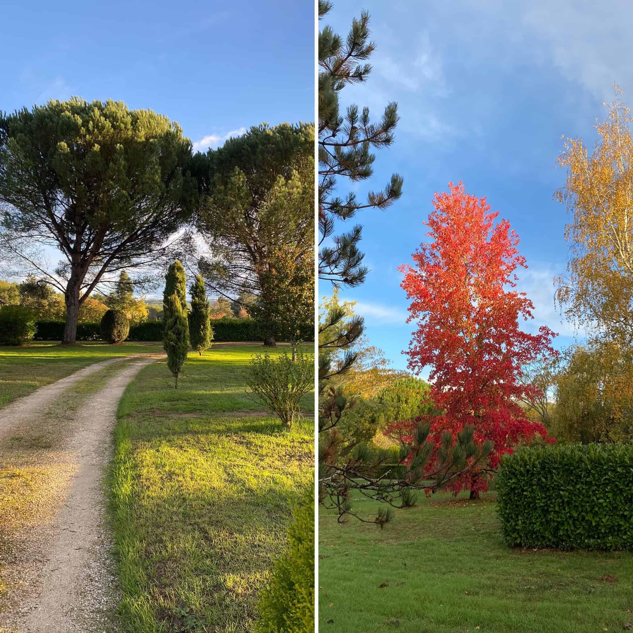 Herbst in Le Petit Manoir