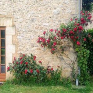 Le Pommier petite maison de campagne près de Sarlat